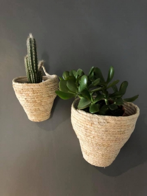 Set of 2 Wall Planters Image